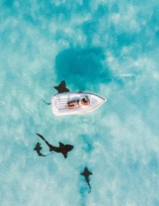 Sharks circling a small boat